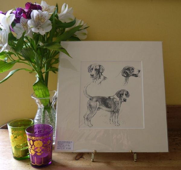 Hound three studies - H B9 - 1940's print by K F Barker